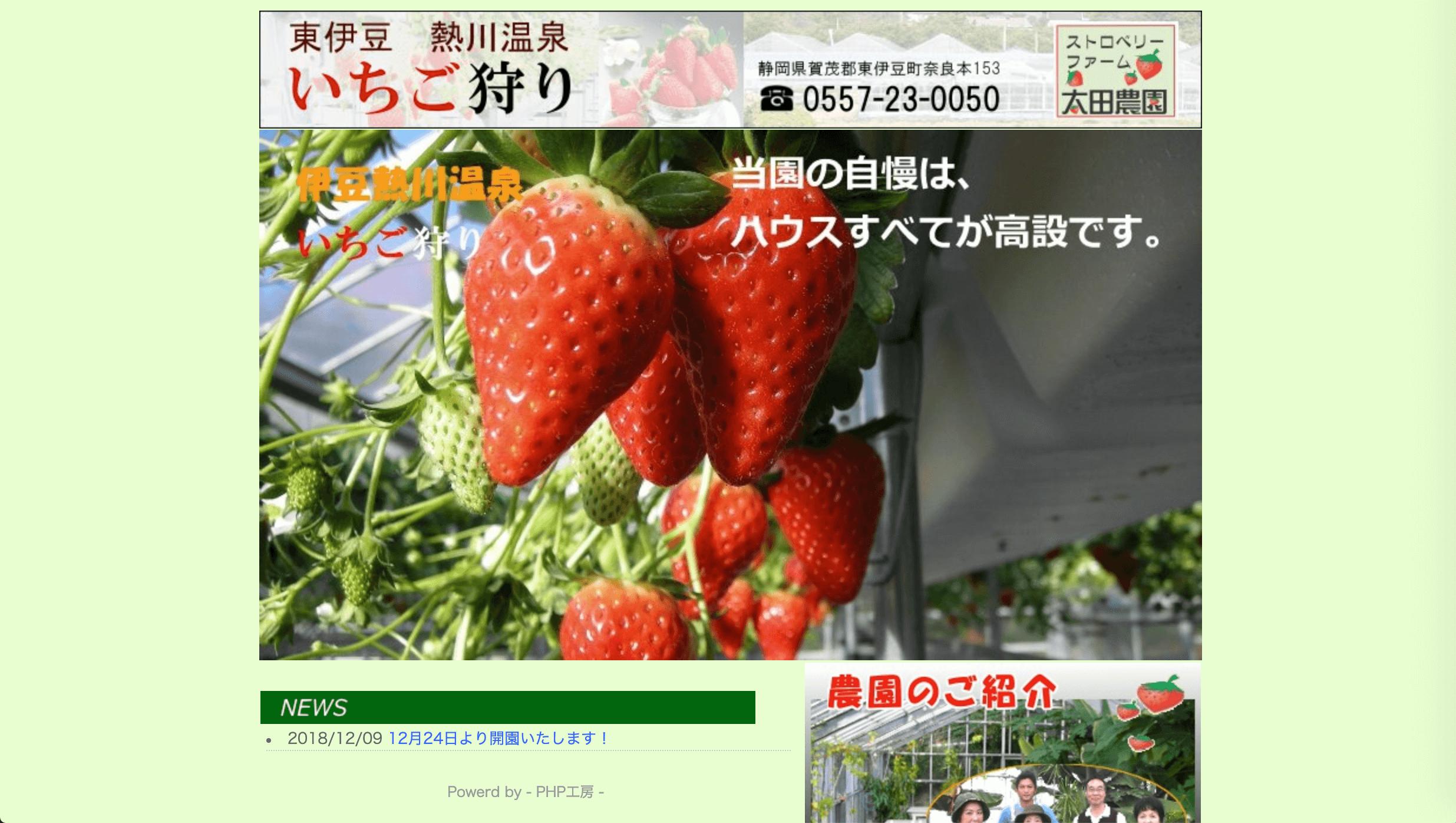 ストロベリーファーム 太田農園のイチゴ狩り